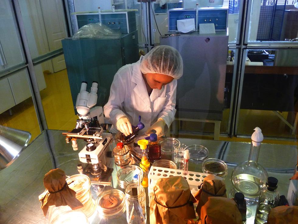 Что можно повесить в химической лаборатории